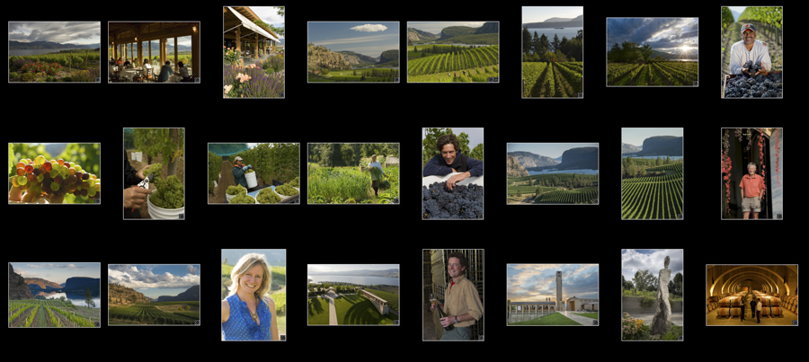Link to view photo libraries for British Columbia & area wineries