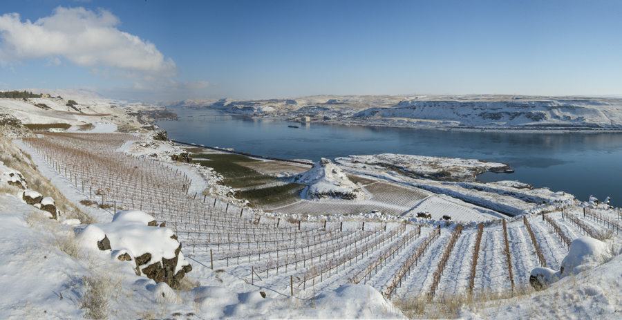 Early winter storm at Maryhill winery in the Columbia River Gorge, Washington