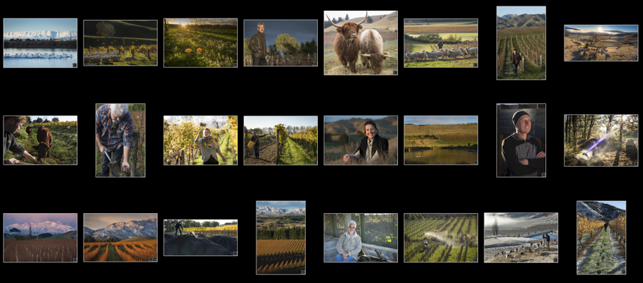 link to view New Zealand sustainable wineries photo library