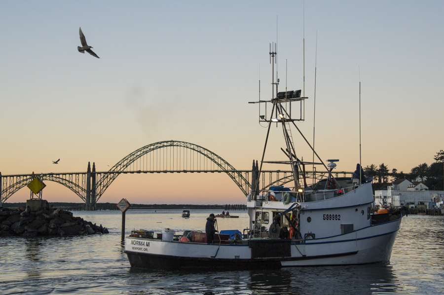 Fishing vessels depart Newport marina at dawn