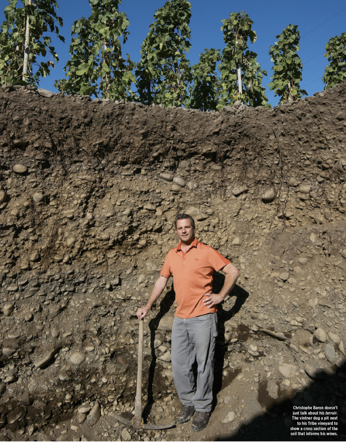 Christophe Baron inside 10 foot pit next to his Tribe Vineyard, showcasing soil and depth of vine roots.