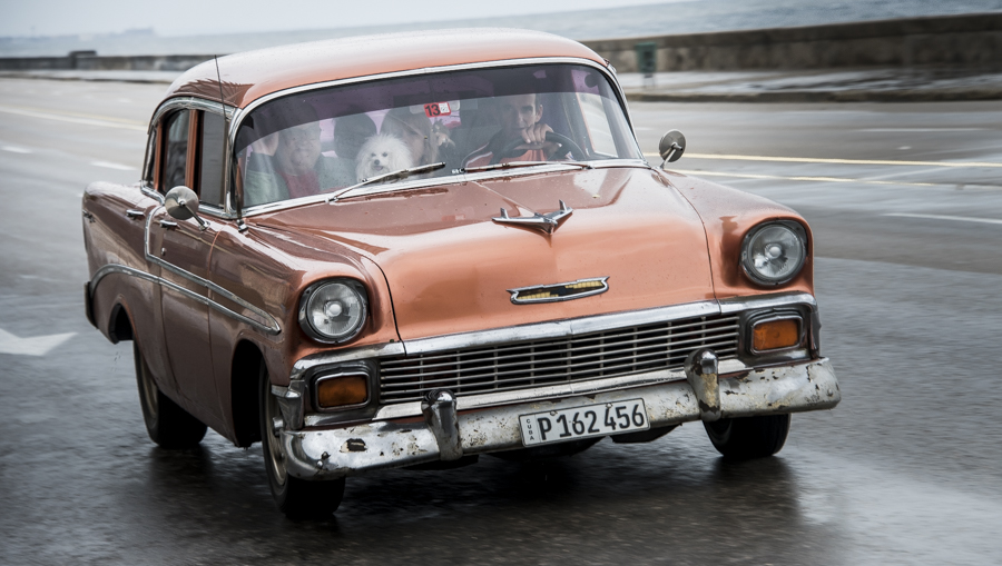 "It's not just tourists in the classic cars. According to Chris Baker's ""Cuba Classics' book, ""About 60,000 cars - one in every eight cars in contemporary Cuba (compared to one in every 400 cars in the USA) - is a pre 1960's American model."""