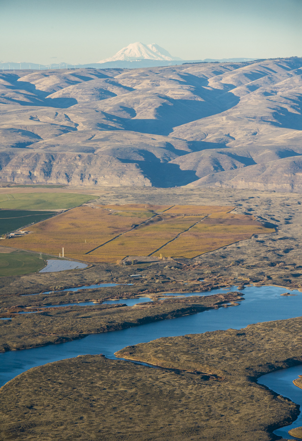 Helicopter photo over Wahluke Vineyards central Washington, Mt Adams in background